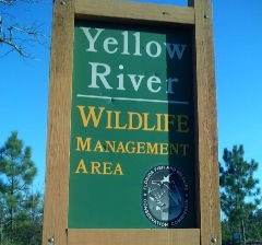 The Yellow River Wildlife Management Area ismap located in Holt, Florida.