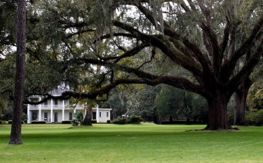 The Eden Gardens State Park in Point Washington, Florida, was donated to the state by Ms. Lois Maxon to showcase her collection of artwork and antiques.